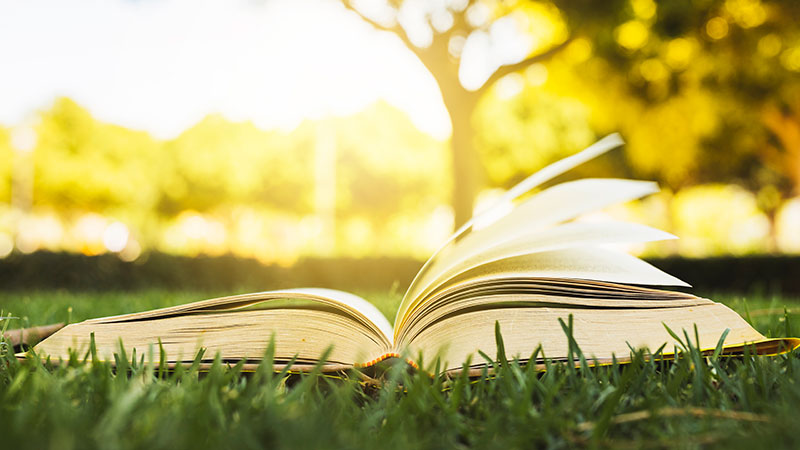 Open boek in grasveld